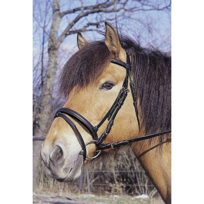 Uzdečka STANDARD, hnědá, pony, bez udidla
