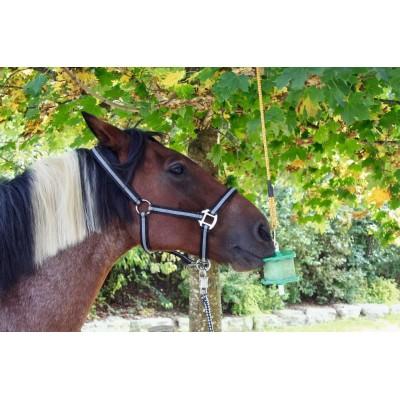 Liz pro koně Delizia, malina náplň