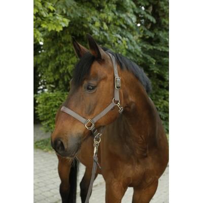 Ohlávka Covalliero kolekce F/S 2020, šedá, pony