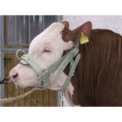 Ohlávka pro býky, 38mm, chrom-kůže