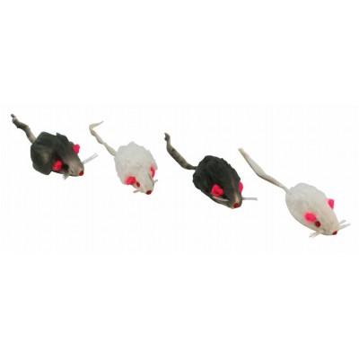 Myš chlupatá