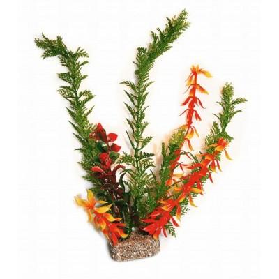 Akvarijní rostlina , 30cm
