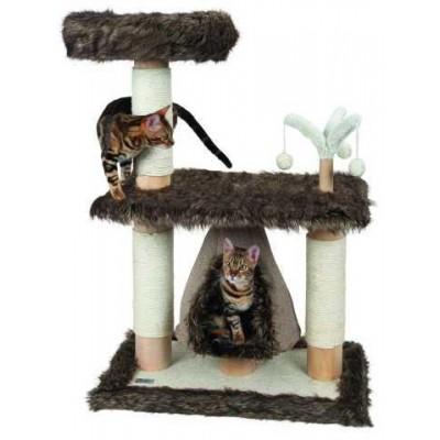 Kočičí strom Zamunda Jade