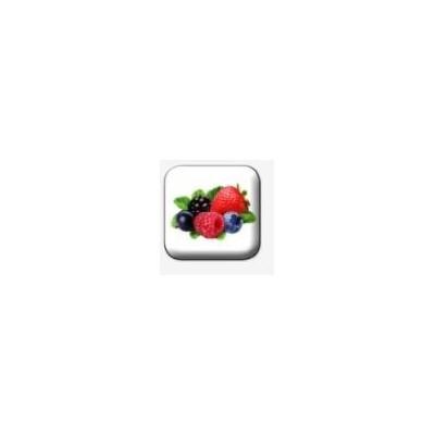 Ochucovadlo - příchuť lesní ovoce, pyré, 10 kg balení (frutti di bosco purea)