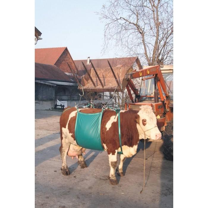Zvedák krav (pro zvířata o hmotnosti do 1000kg)
