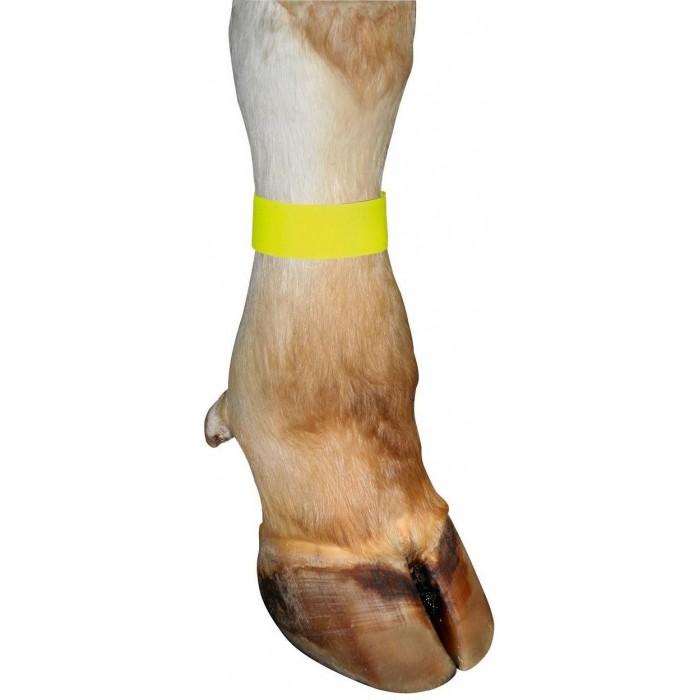 Páska na nohu text.žlutá suchý zip 10ks