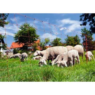 Síť ohradníková pro ovce, oranžová, 90cm, dvojitá špice